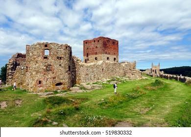 Castle Hammershus- Bornholm - Denmark - thistle