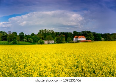 castle in northern germany, mecklenburg - western pomerania in early summer with rapeseed field