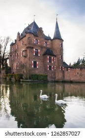 Castle Satzvey with swans