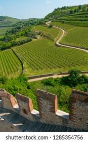 Castle of Soave near Verona on sunny early summer day