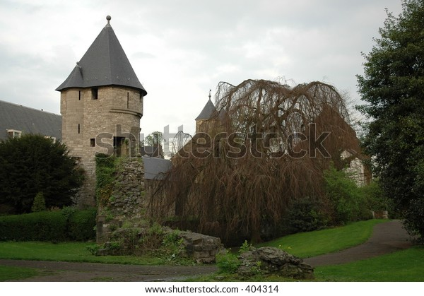castle and tree