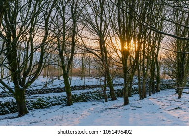 Castleton Peak Disctrict winter sunset through the trees with snow on the ground.