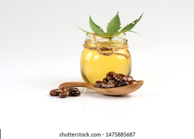 Castor, seeds ,green leaves and oil on white background.