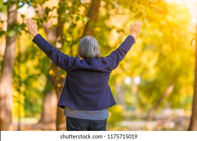 Casual senior woman with arms outstretched standing in autumn park. Back view of senior woman watching at the trees in autumn with hands up.