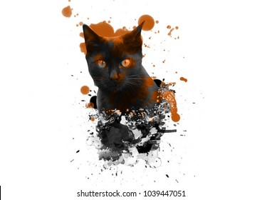 cat with abstract watercolor on white background,for printing on posters