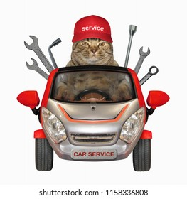 The cat auto mechanic in a red cap is in a car of the vehicle repairs company. White background.