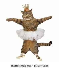 The cat ballet dancer is wearing the crown, pointe shoes and a skirt . White background.