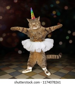 The cat ballet dancer is wearing a rainbow horn, pointe shoes and a skirt .