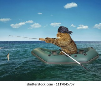 The cat in a bandana is fishing on the inflatable boat in the sea.