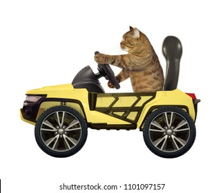 The cat is behind the wheel of a yellow car. White background.