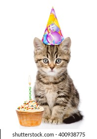 Cat in birthday hat and cake looking at camera. isolated on white background