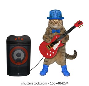The cat in a blue hat, a bow tie and boots is playing the electric guitar near the loudspeaker. White background. Isolated.