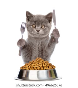 Cat with bowl of dry cat food holds a knife and fork. isolated on white background