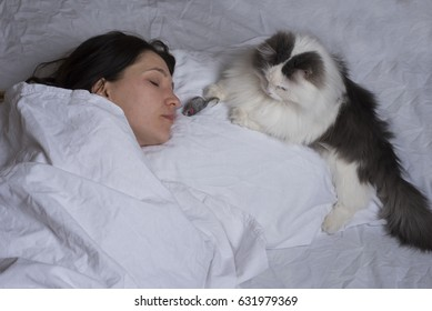 Cat brought prey to his mistress