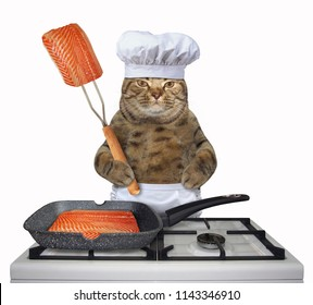 The cat chef is cooking salmon in a square grill pan on a gas stove. White background.