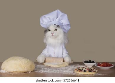 cat chef preparing a pizza