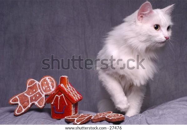 Cat with Christmas Ornament portrait