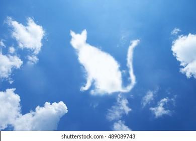 Cat cloud shape on sky.