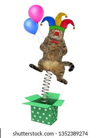 The cat clown in a jester hat with balloons is jumping out of the box. April fools day. White background. Isolated.