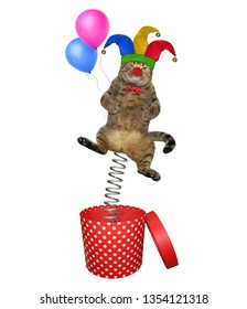 The cat clown in a jester hat with balloons is jumping out of the red box. April fools day. White background. Isolated.