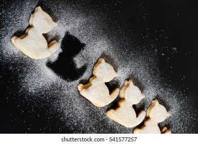cat cookies