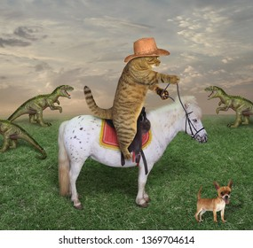 The cat cowboy in boots on a white horse grazes a herd of dragons on the farm. His dog is next to him.