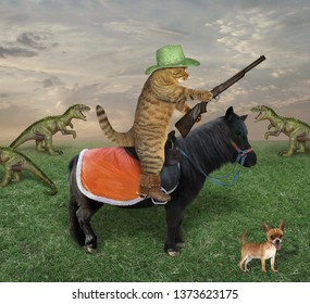 The cat cowboy on a black horse with a gun grazes a herd of dragons on the farm. His dog is next to him.