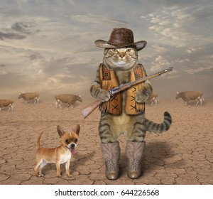 The cat cowboy with a real rifle guards a herd of cows. His dog is next to him.
