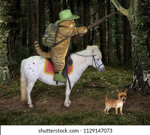 The cat cowboy with a rifle rides a horse in the forest. His dog is next to him.