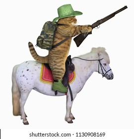 The cat cowboy with a rifle rides a horse. White background.