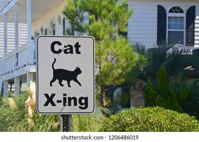 Cat Crossing Sign, Sunset Beach, North Carolina