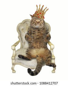 The cat in the crown sits on the throne. Black background.