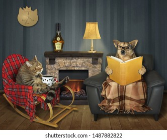 The cat with a cup of coffee in the wooden rocking chair and the dog with a newspaper in the leather armchair are near fireplace in the living room.