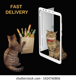 The cat delivers the paper bag with food to the customer home. The door looks like a smartphone. Black background.