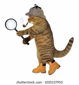The cat detective with a smoking pipe holds a magnifying glass. White background.
