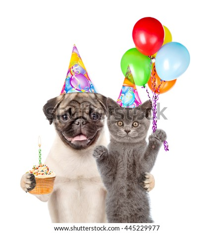 Cat And Dog In Birthday Hats Holding Balloons Cake Isolated On White Background