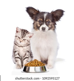 Cat and dog with a bowl of dry food. isolated on white background