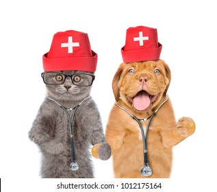 Cat and dog dressed like a doctors with a stethoscopes. isolated on white background