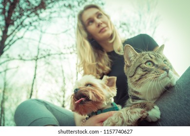Cat and dog. Girls are walking with a Yorkshire terrier and a cat