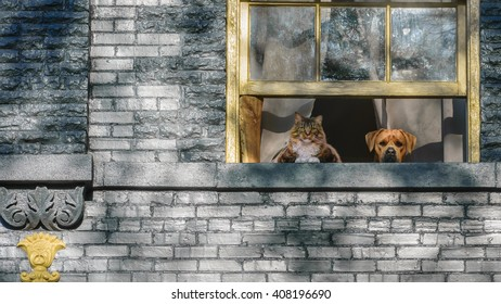A cat and a dog looking out a window of a brick Victorian home.