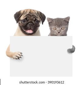 Cat and Dog peeking from behind empty board and looking at camera. isolated on white background