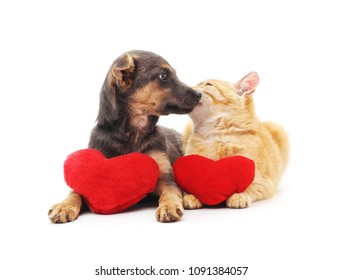 Cat and dog with red hearts isolated on a white background.