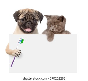 Cat and dog with a toothbrush peeking from behind empty board. isolated on white background