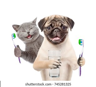 Cat and dog with  toothbrushes and a glass of water. isolated on white background