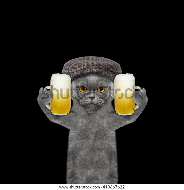 Cat drinks beer and greeting somebody -- isolated on black