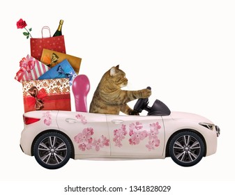 The cat drives a car painted with beautiful pink flowers with gift bags. White background. Isolated.
