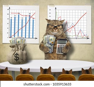 The cat economist  teaches his students to earn money.