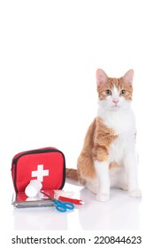 cat with first aid kit