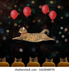 The cat is flying with the help of red balloons in the circus. The viewers are watching this show carefully