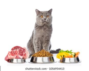 Cat with food for pets. isolated on white background.